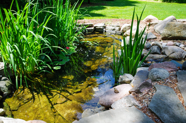 1794 Sashabaw Dr - Peaceful Pond - 59