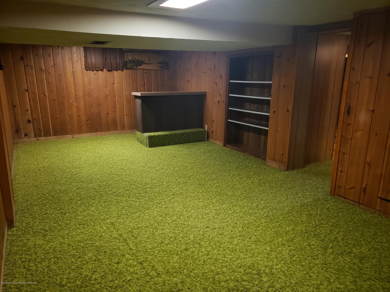 313 E Shepherd St - Bonus Room, Lower Level - 44
