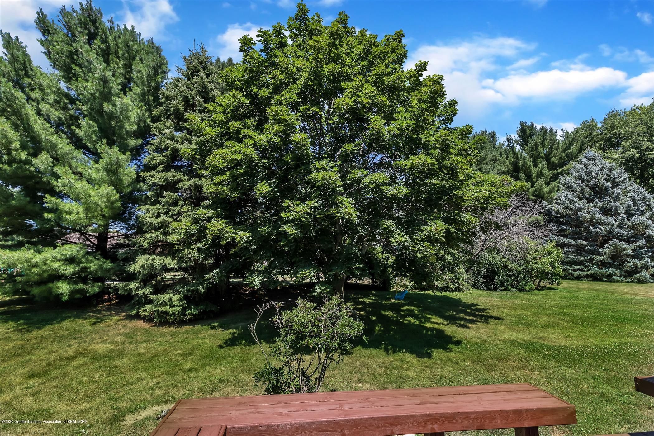 3820 Bush Gardens Ln - Green Space Back Yard - 43