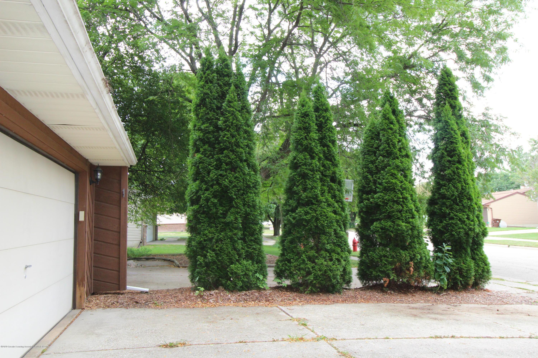 2410 Sower Blvd - 26.6 - tree divider - 29