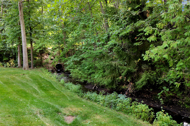9449 Buckingham Cir - Yard/Creek - 50