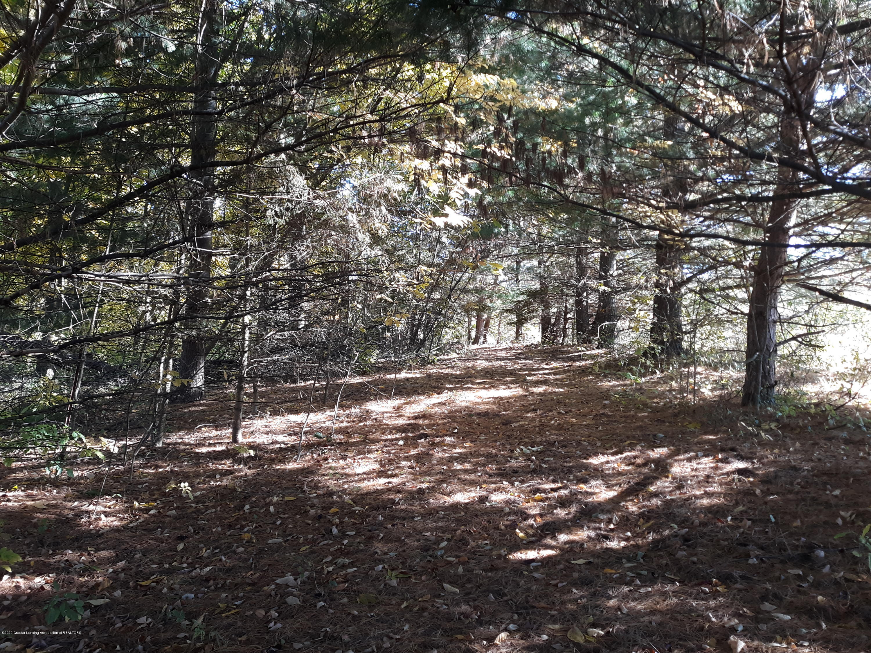 865 Barry Rd - Trail thru the Woods - 50