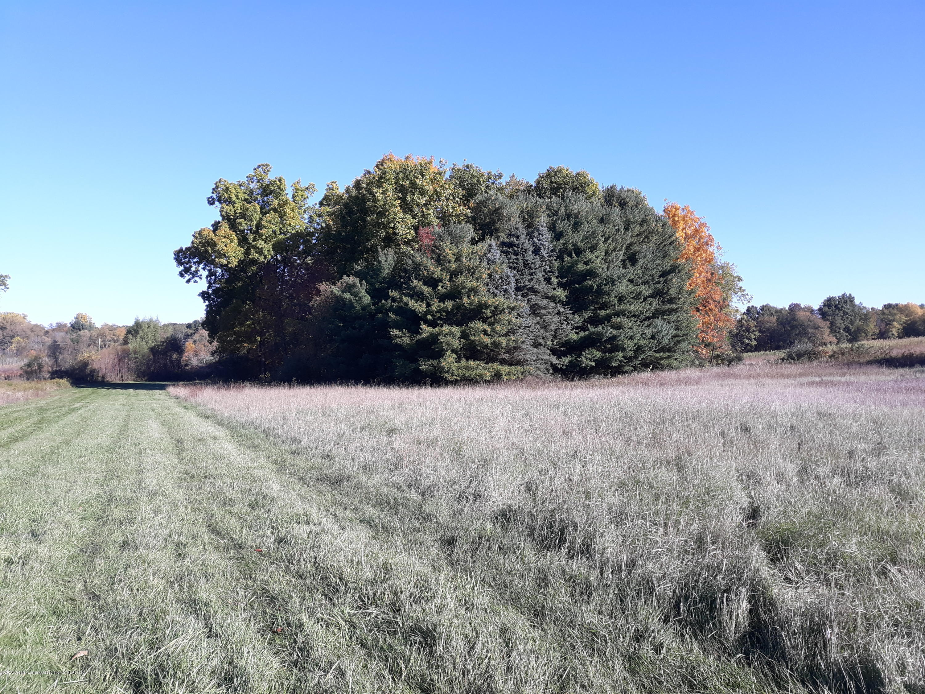 865 Barry Rd - Field and Trees on almost 16 acres - 55