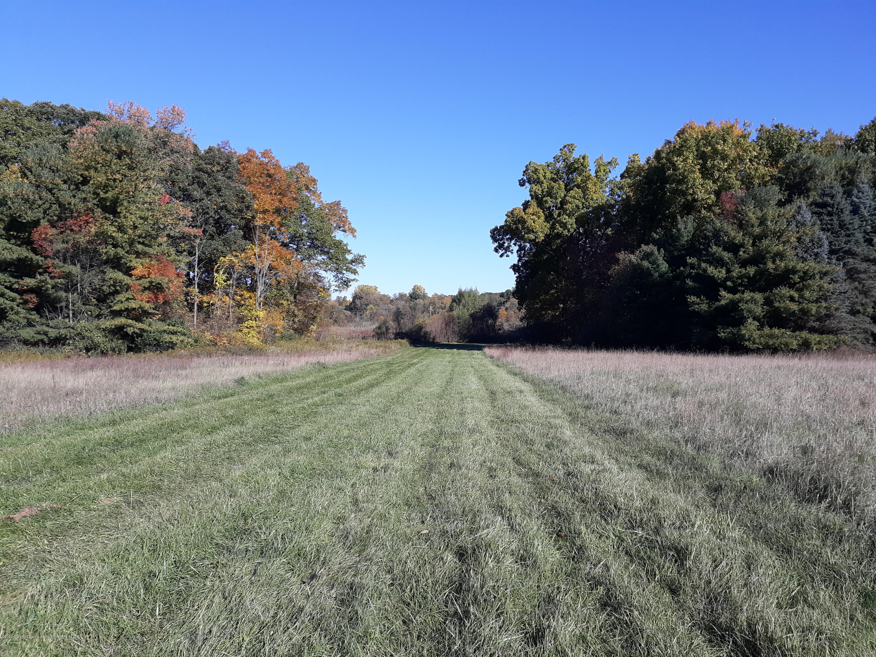865 Barry Rd - Part of the almost 16 acres - 56