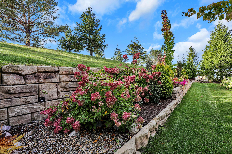 6143 E Longview Dr - back landscaping - 42