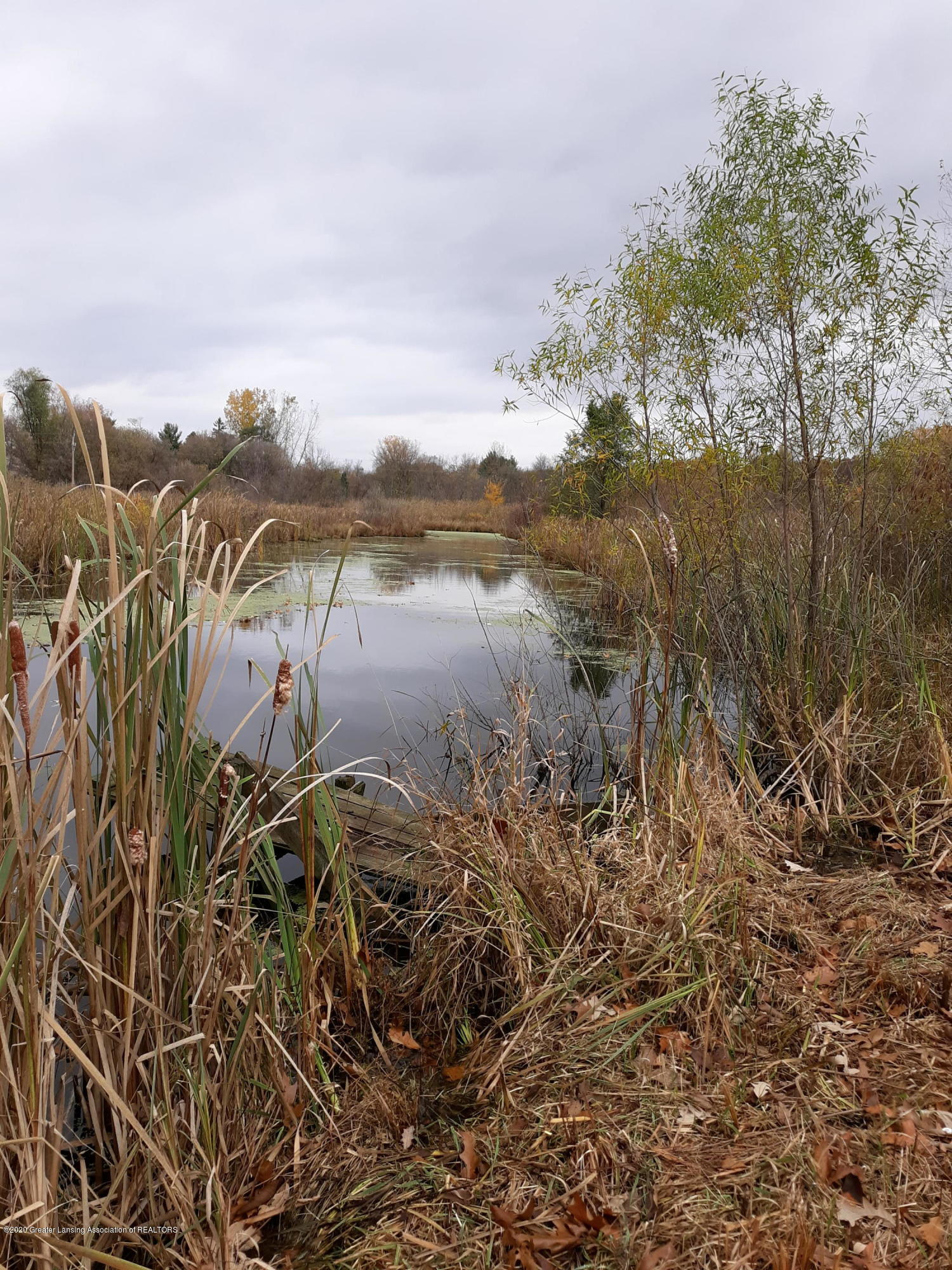865 Barry Rd - Pond - 39