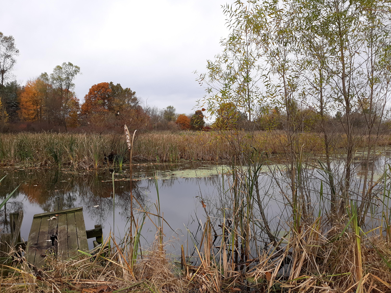 865 Barry Rd - Pond - 41