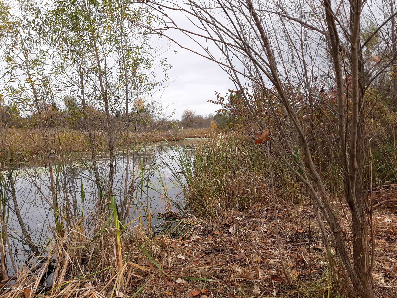 865 Barry Rd - Pond - 42