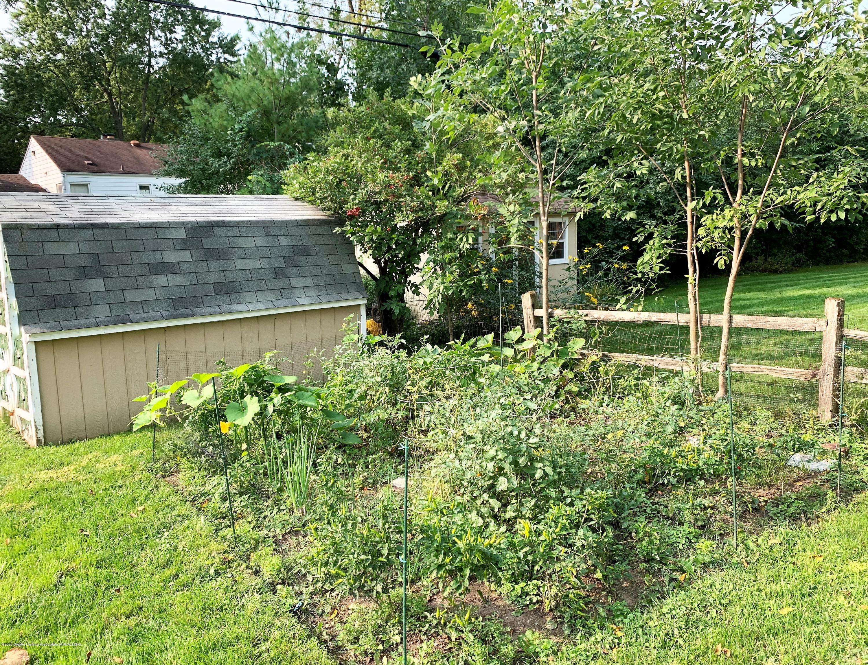 815 Darlington Ave - back garden - 38