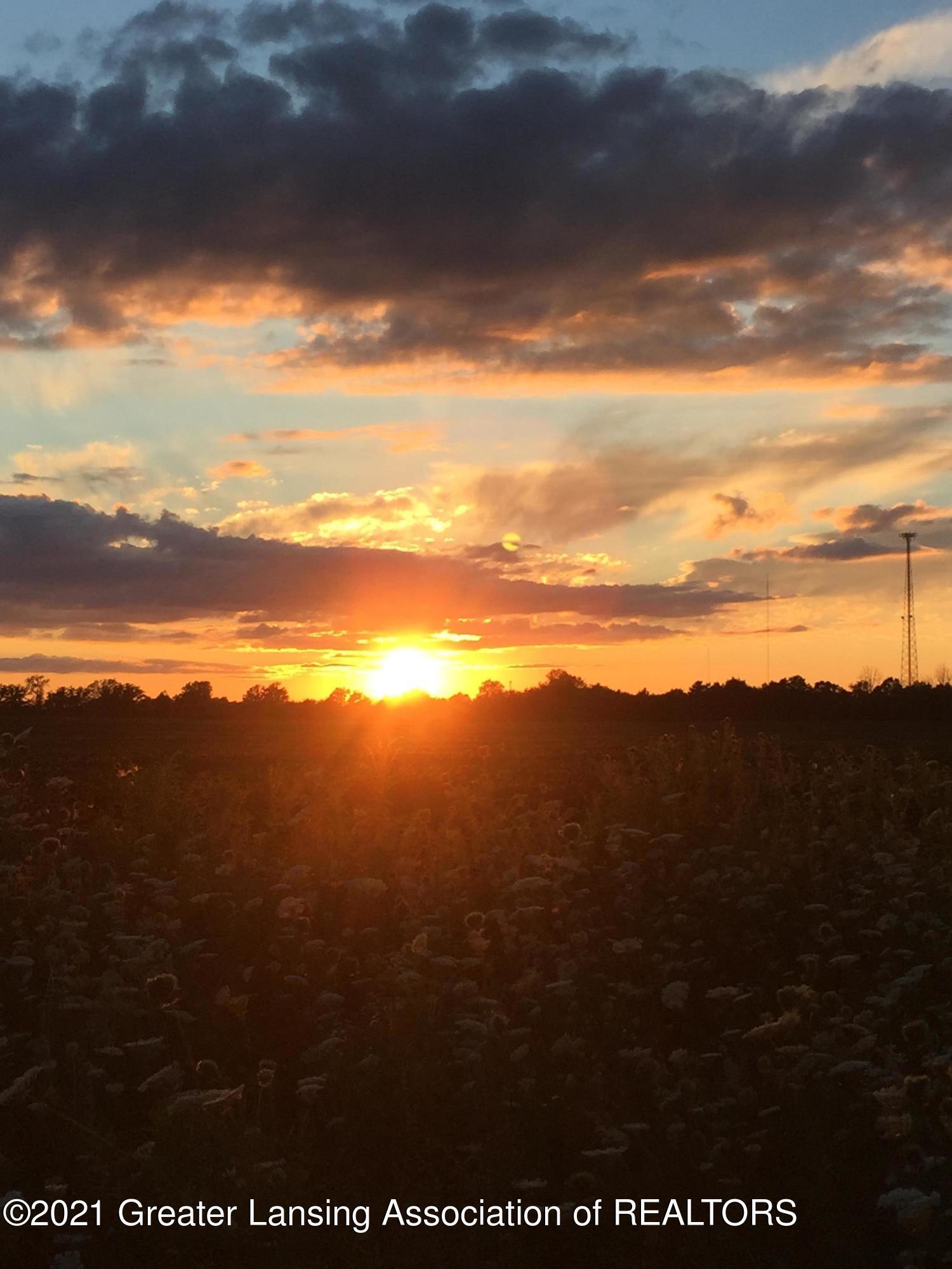 740 Linn Rd - sunset 2 - 24