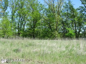 xxx Cihlar Point Circle SW (Lot 13, Alexandria, MN 56308