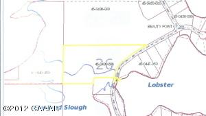 xxx Beauty Point Road SW, Farwell, MN 56308