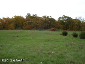 xxx Don Dero Drive (Lot #1), Glenwood, MN 56334