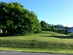 117 Sumac Drive, Alexandria, MN 56308