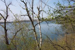 Lot 9 Rachel Shores SW, Farwell, MN 56327