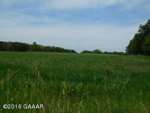 11.5 Acres Lake Ida Way NW, Alexandria, MN 56308