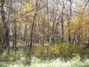 Lot 2 Bk 1 Swan View Road, Fergus Falls, MN 56537