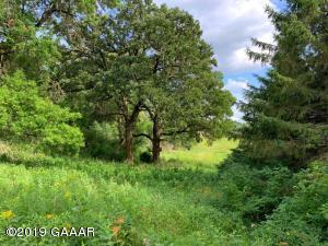 XXX Pheasant Hill Road NE, Osakis, MN 56360