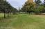 The back of the back yard!! 1.56 acre lot!