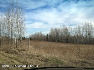 12 acres Hines Road NE, Hines, MN 56647