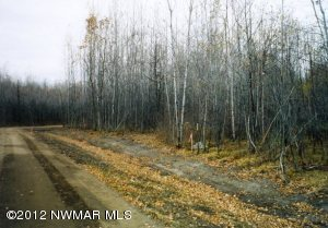 Atylade Court NE, Lot 1, Bemidji, MN 56601