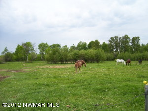 Corral Drive NE, Kelliher, MN 56650
