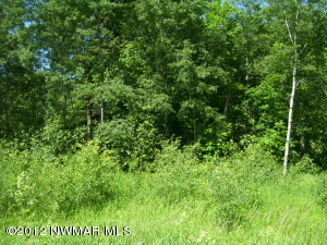 Balsam Ridge Road NW, Bemidji, MN 56601