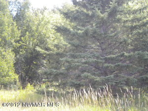70th Avenue NW, Williams, MN 56686