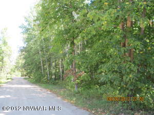 Durand Drive NW, Puposky, MN 56667