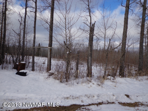10815 Hwy 1 Highway, Northome, MN 56661