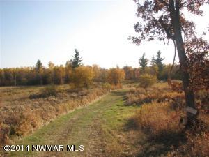 TBD Otterkill Trail, Bagley, MN 56621