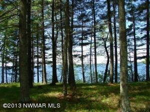 Parcel C Pinnacle Point Trail NW, Hackensack, MN 56452