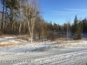 ARCHELE FOREST Road, Williams, MN 56686