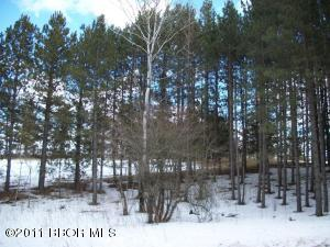 BEL TREE Drive NE, Lot 16, Bemidji, MN 56601