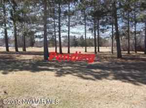 Parcel D, Sherwood Avenue, Thief River Falls, MN 56701