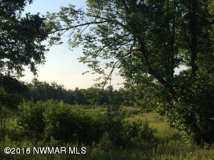 TBD ROXBURY Drive, Tract B, Guthrie, MN 56461