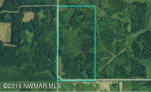 County Road 19 Road, Roseau, MN 56751