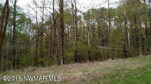 TBD Lot 13 NE Howling Wolf Road, Bemidji, MN 56601