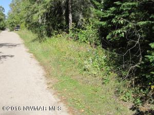 Sheephead Drive NE, Waskish, MN 56685
