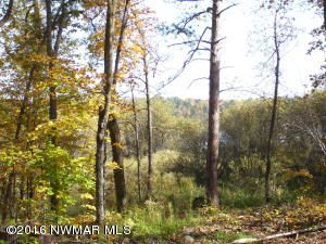 Andrusia Heights Road NE, Lot 17 & 18, Bemidji, MN 56601