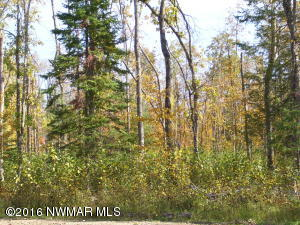 Andrusia Heights Road NE, Lot 4 Block 2, Bemidji, MN 56601