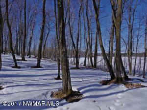 TBD Howling Wolf Road NE, Lots 11, Bemidji, MN 56601