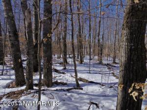 TBD Howling Wolf Road NE, 14, Bemidji, MN 56601