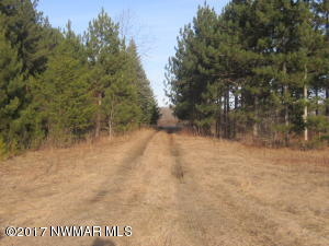 Co. Rd. 141 Road, Roosevelt, MN 56673
