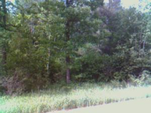 Riverview Drive, L4B1, Bemidji, MN 56601