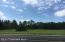 Lake Avenue NE, Lot D, Bemidji, MN 56601