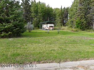 540 Pine Street, Williams, MN 56686