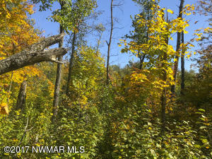 TBD Howling Wolf Drive NE, Lot 2, Bemidji, MN 56601