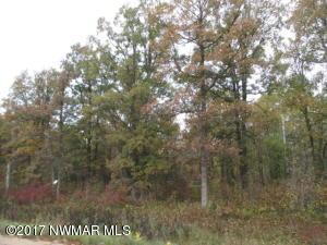 TBD Wildwood Drive NE, Bemidji, MN 56601