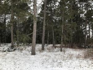 Willshar Way NW, Bemidji, MN 56601